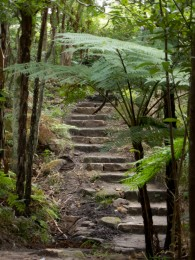 The trails have stone steps where needed; a great tracks system